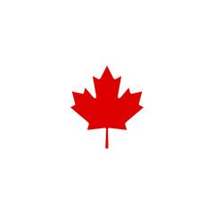 Canadian mapple vector illustration