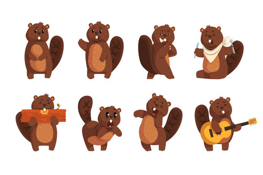 Cute funny character beaver in different actions set of cartoon vector Illustrations on a white background