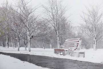 Snow-covered winter park and benches. Park and pier for feeding ducks and pigeons. The first snow covered the autumn park.