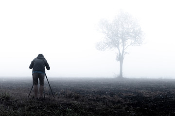 photographer taking photo of lone tree in thick morning fog. photographing tree in Thailand national park. low visibility due to water mist.