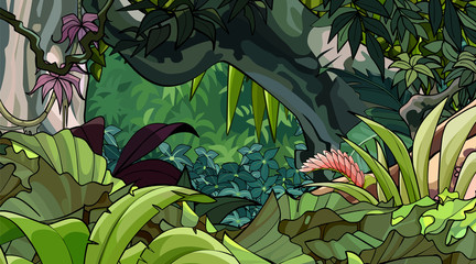 cartoon tropical forest with a variety of lush vegetation