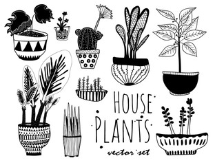 Hand drawn houseplants. Graphic vector set