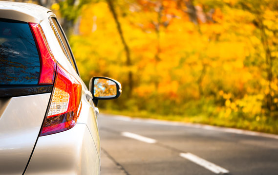 Close Up Tail lamp of The car on the road or gold line in the forest during the autumn season with blur forest and Leaves change color background in travel and transportation concept.