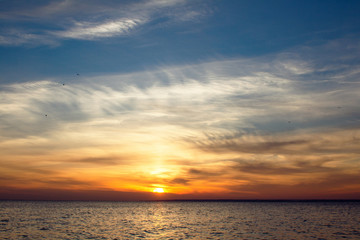background of sunset on the sea, birds fly among the clouds lit by the rays of the sun