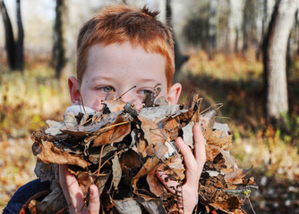 boy in a scarf around his neck in the autumn forest, dry leaves in his hands, blurred background, close-up.