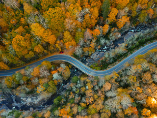Aerial Drone view of Autumn / fall in the Blue ridge of the Appalachian Mountains  near Asheville, North Carolina. Vibrant red, yellow, orange leaf foliage colors on the curve of mountain road side.