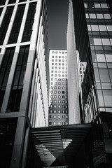tall modern London buildings in black and white