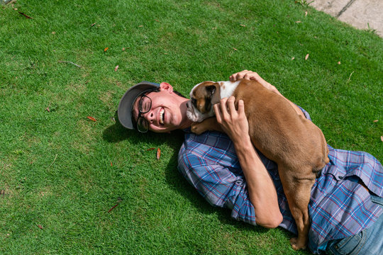 Boy with Bulldog Puppy Laughing on Green Lawn