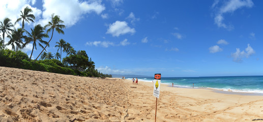 Perfect beach Hawaii