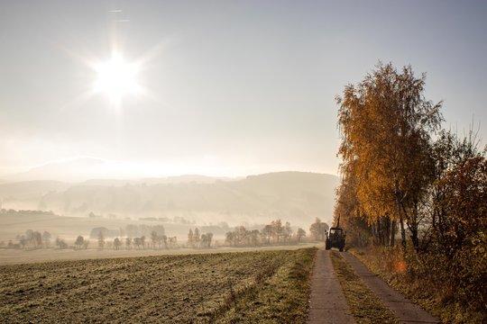 Frühnebel im Herbst
