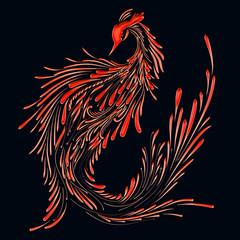 Fire bird on a black background, red phoenix, pattern