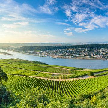 View of Bingen, vineyards and River Rhine, Rudesheim, Rhineland-Palatinate, Germany