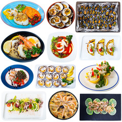 Seafood meals isolated on white