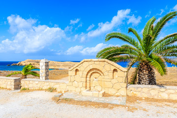 Palm tree and stone wall in rural landscape of Karpathos island in Lefkos village, Greece