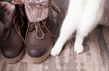Legs of young woman in winter boots and white cat's paw