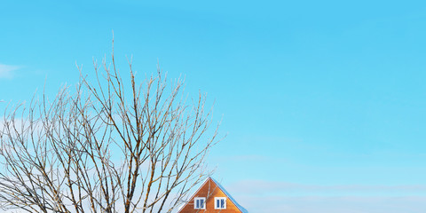 Panoramic winter rural landscape. Sunny day, frozen tree, house roof, windows, blue sky