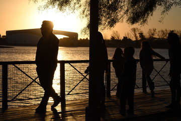 silhouette of man in the sunset
