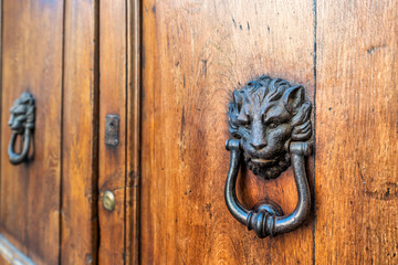 Two door lion head knockers, knobs with handles on wooden, brown door entrance of old, antique, medieval building in Perugia, Italy, Italian city