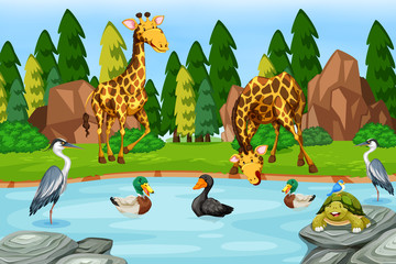 Many animal next to river