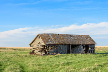 old abandoned barn in field