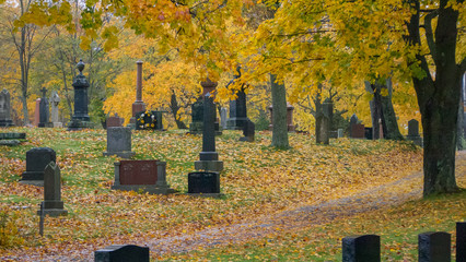 old cemetery in autumn rain, misty, alone, isolated, no people, sad, peaceful. Wall mural