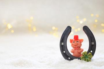 Glücksschweinchen im Schnee