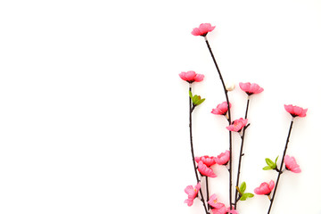 Branch Pink Cherry Blossoms