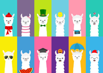 Llama alpaca set. Cute funny cartoon lama character. All seasons. Happy Valentines Christmas St Patrick day Easter Egg Bird Chicken Santa hat, sun Umbrella. Flat design Colorful background.