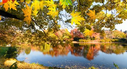 Ruhe am See: Indian Summer, Schönheit des Herbstes am Abend, Spätsommer, Indian Summer, wundervolle Farben im Wald, weiches, stimmungsvolles Licht :)