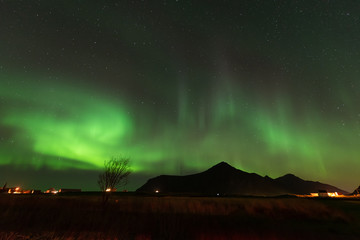 Northern lights over the mountain, Lofoten islands