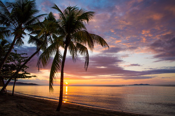 Romantic pink sunset. Sun above the horizon, Coconut palm trees on the beach. Sun beam reflection on the water, pink and purple clouds