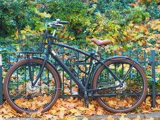 a bike in autumn