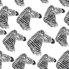Seamless pattern Zebra portrait, Head sketch isolated on white background. Vector