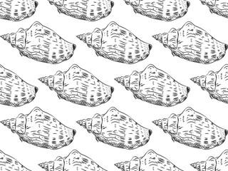 seamless pattern Volutidae, common name volutes, are a taxonomic family of predatory sea snails Unique shells, molluscs. Sketch black contour on white background. Vector