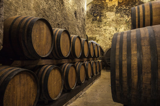 Oak barrels with the wine at the cellar