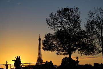 Arbre et tour Eiffel au coucher du soleil
