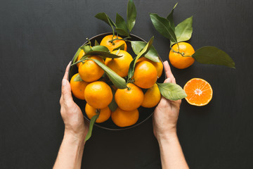 Fresh mandarins with leaves in female hand on black. Healthy eating concept. Copy space.
