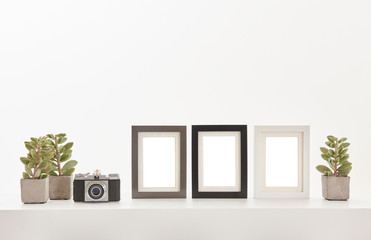Three frame close up, camera vase of plant on the white floor and white background.
