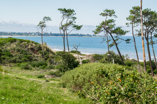 El Fortin Beach
