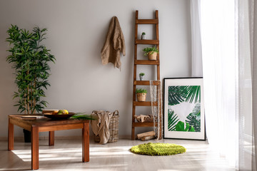 Room interior in eco style with stylish furniture and green plants