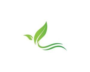Orange Logo Corporation