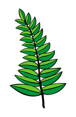 vector contour illustration of a green branch isolated on white background. tattoo. logo. children's illustration