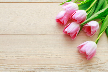 Beautiful pink and white tulips on wood