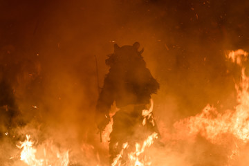 Wall Murals Nasa Krampus in the fire. Christmas devils.