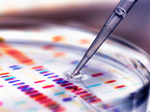 Pipette adding sample to petri dish with DNA profiles in background