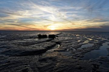 La plage de Moeze