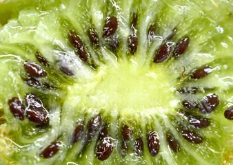 macro shot of a kiwi fruit