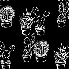 floral seamless pattern cactus in a flower pot