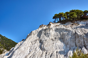 Pine trees on a white cliff on the Greek island of Lefkada.