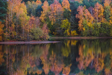 Printed kitchen splashbacks Autumn Lake and tree scenery in autumn with reflections on calm surface. Trees in yellow and orange leafs.
